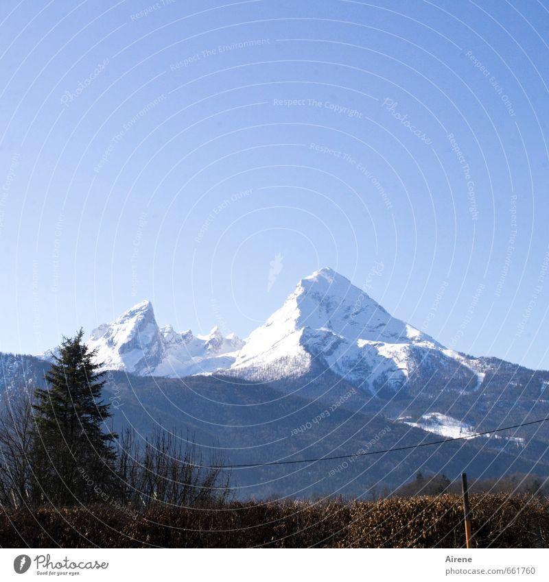 Zuckerberg, the Whats-man Nature Landscape Cloudless sky Winter Beautiful weather Snow Alps Mountain Watzmann Berchtesgaden Alpes Peak Snowcapped peak Bavaria