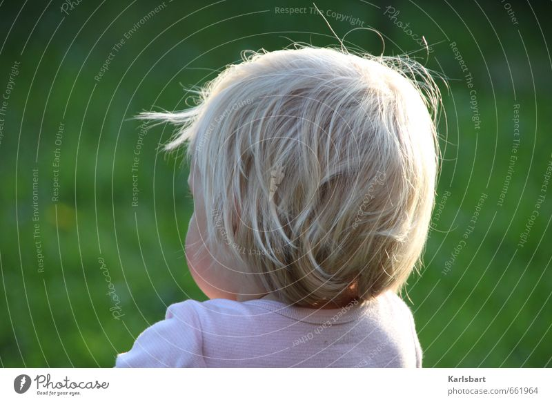 Child Nature Summer Girl Meadow Movement Boy (child) Spring Playing Freedom Healthy Blonde Infancy Beautiful weather Observe Study