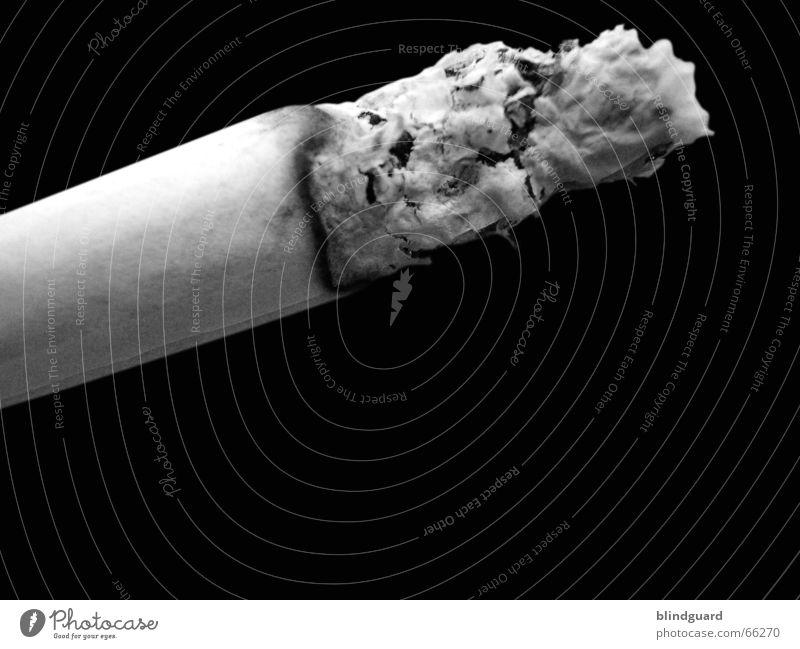 Smoking Burn Intoxicant Cigarette Tar Unhealthy Embers Ashes Expensive Tobacco Nicotine Malodorous Pulmonary disease Addictive behavior Harmful to health