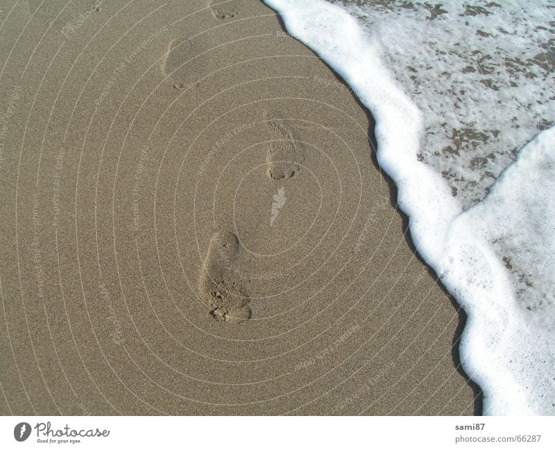 Traces in the sand Tracks Beach Ocean Waves Italy Vacation & Travel Sand Water Feet footprint traces in the sand Walking
