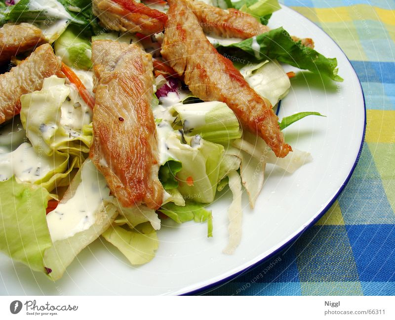 Meat Nutrition Food Plate Checkered Lettuce Sauce Tablecloth Turkey Chicken Vegetable Dressing Roasted Hen