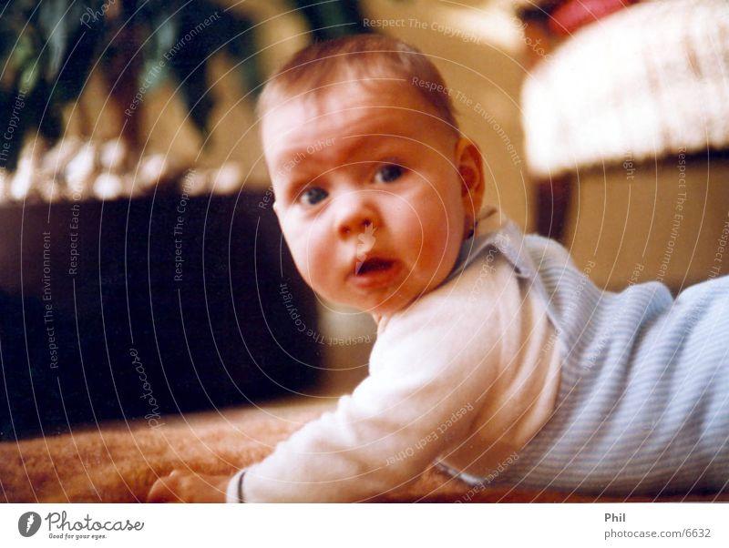 Human being Child Baby Small Sweet Toddler Ask Carpet Crawl