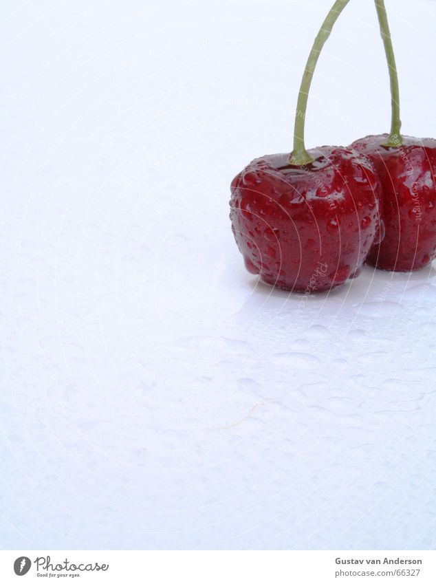 Water White Tree Red Summer Cold Healthy Wet Drops of water Fresh Sweet Hot Anger Candy Harvest To enjoy