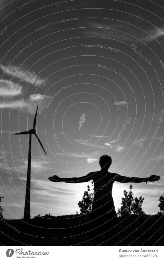Human being Man Nature Sky White Tree Sun Black Clouds Wind Energy industry Electricity Wind energy plant Mill Renewable energy