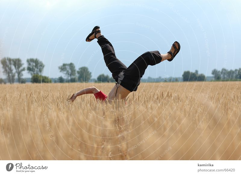 Summer Joy Jump Dance Field Cornfield Handstand