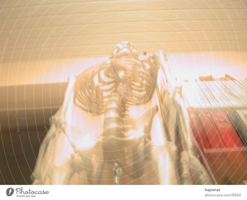 skeleton Skeleton Blur Human being Distorted
