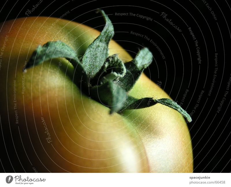 Green Red Black Healthy Vegetable Delicious Mature Tomato Solanaceae Vitamin C