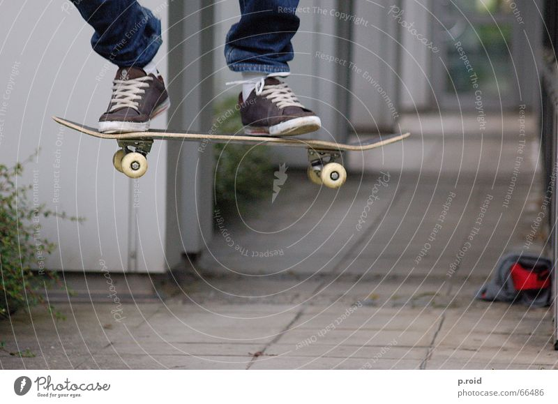 Youth (Young adults) City Sports Jump Playing Air Legs Feasts & Celebrations Flying Concrete Aviation Break Stand Asphalt Skateboarding