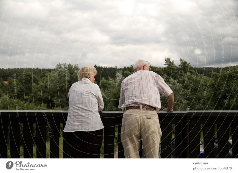 Stories behind the garden fence Healthy Life Relaxation Human being Female senior Woman Male senior Man Couple Senior citizen 2 45 - 60 years Adults