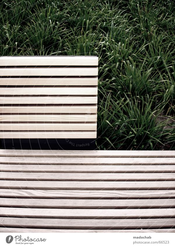 SITTING WAITING WISHING | break bank wellness relaxation Grass Wooden bench Park Design Break Relaxation Style Mono Open Nature Bench green stuff Share Sit