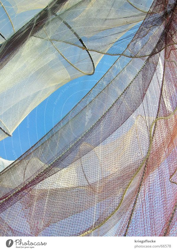 multi-layered White Synthesis Important Feed Fisherman Fishing net Watercraft Sailboat Ocean Animal Sky Blue Net Sewing thread Rope Food profit die of fish