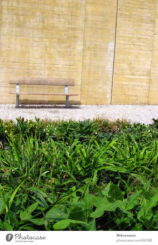 Green Plant Summer Loneliness Relaxation Wall (building) Lanes & trails Wall (barrier) Stone Sit Break Bench Furniture Traffic infrastructure Resting place