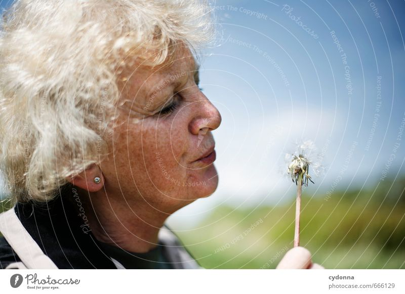 dandelion Lifestyle Happy Healthy Health care Care of the elderly Harmonious Well-being Human being Female senior Woman Senior citizen 45 - 60 years Adults
