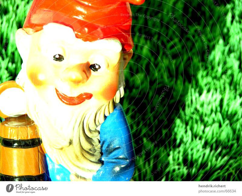 beer dwarf Dwarf Artificial lawn Beer Water jug Macro (Extreme close-up) Summer Garden gnome Sun