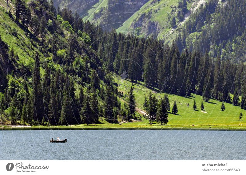Fishing and fishing Lake Cold Green Fishing (Angle) Calm Loneliness Forest Meadow Fir tree Watercraft Motorboat Summer Mountain Blue Valley Stone Rock