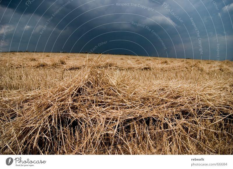 Nature Sky Blue Clouds Yellow Dark Autumn Rain Field Fear Environment Horizon Dangerous End Threat Climate