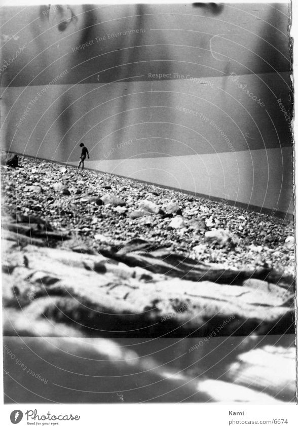 stony beach Beach Photographic technology Structures and shapes Stone Black & white photo