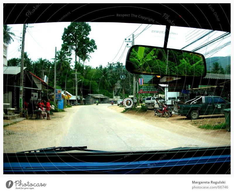 road trip Offroad vehicle Thailand Mirror Palm tree Village Koh Samui Left-hand traffic Rear view mirror Car jeep Street Window pane Lanes & trails