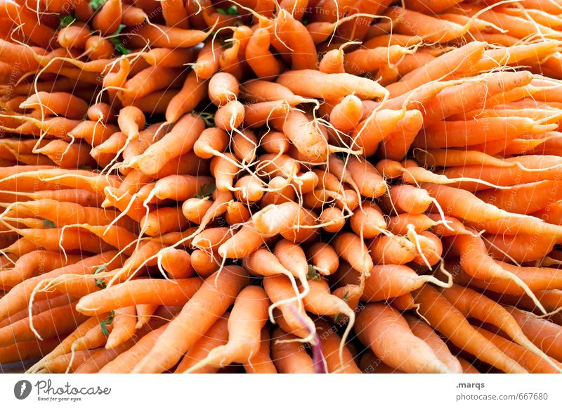 EAT THIS! Food Vegetable Carrot Nutrition Organic produce Vegetarian diet Healthy Fresh Delicious Many Orange Perspective Vitamin C Vitamin-rich Colour photo