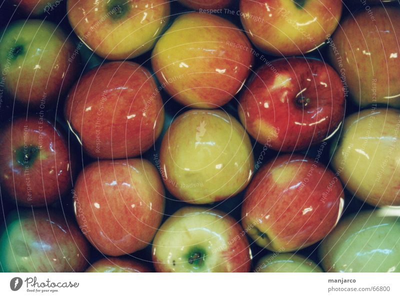 apple Delicious Red Yellow Green Narrow Multiple Food Cleaning Apple Stalk Water reflection Many abundance Nutrition