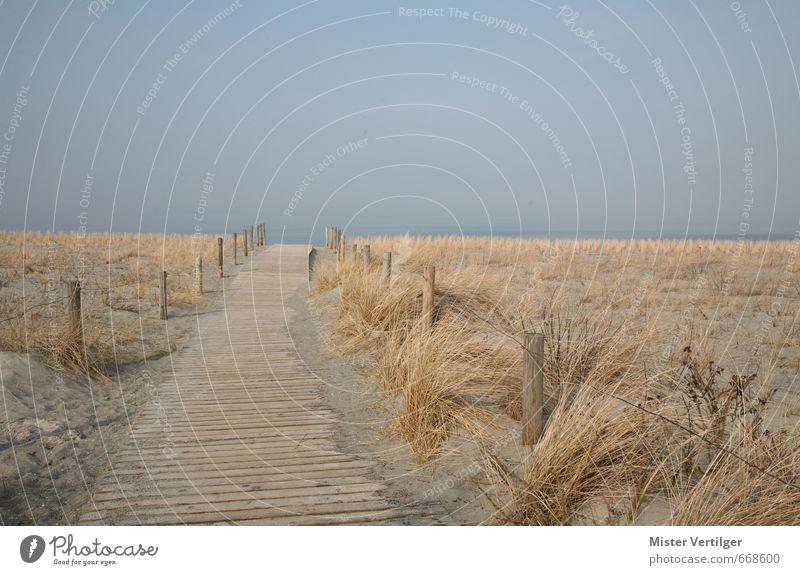 dune Nature Landscape Sand Water Sky Horizon Spring Autumn Fog Grass Waves Coast Beach Baltic Sea Ocean Port City Deserted Discover Relaxation Walking Dream