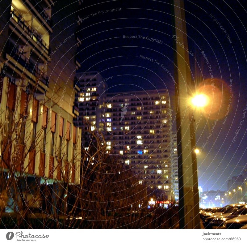 Sky City Winter Dark Cold Environment Street Building Facade Glittering Ice Car Gloomy Gold Bushes High-rise