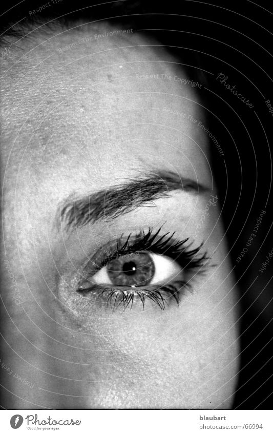 Woman White Face Black Eyes Head Nose Cheek Eyelash Eyebrow Forehead Pupil Iris Nasal bone