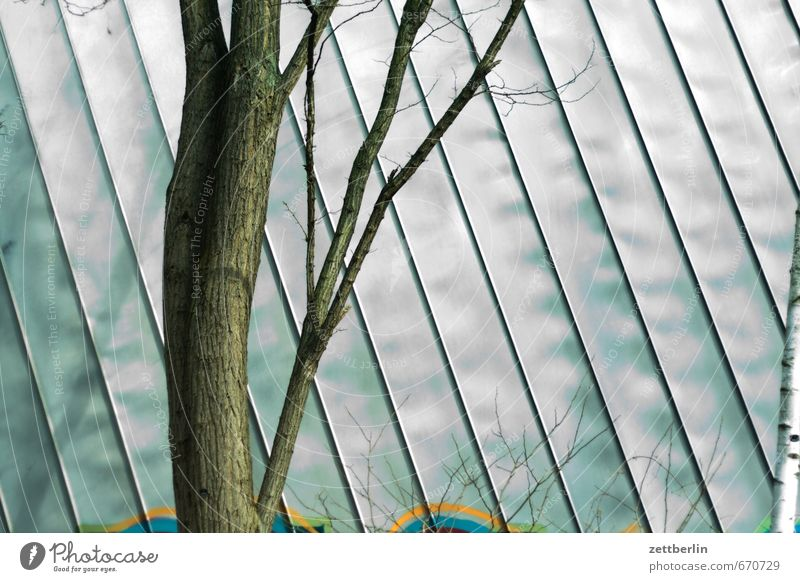 Nature City Green Tree Relaxation House (Residential Structure) Environment Wall (building) Building Architecture Wall (barrier) Spring Bright Metal