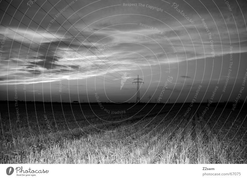 away in the nothing Field Electricity pylon Agriculture Clouds Dark Line Far-off places Landscape Sky Perspective Evening lines Black & white photo