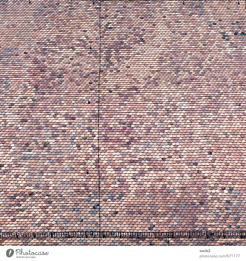 roof landscape Church Manmade structures Building Architecture Roof Roofing tile church roof Authentic Firm Large Tall Above Many Arrangement Precision Quality