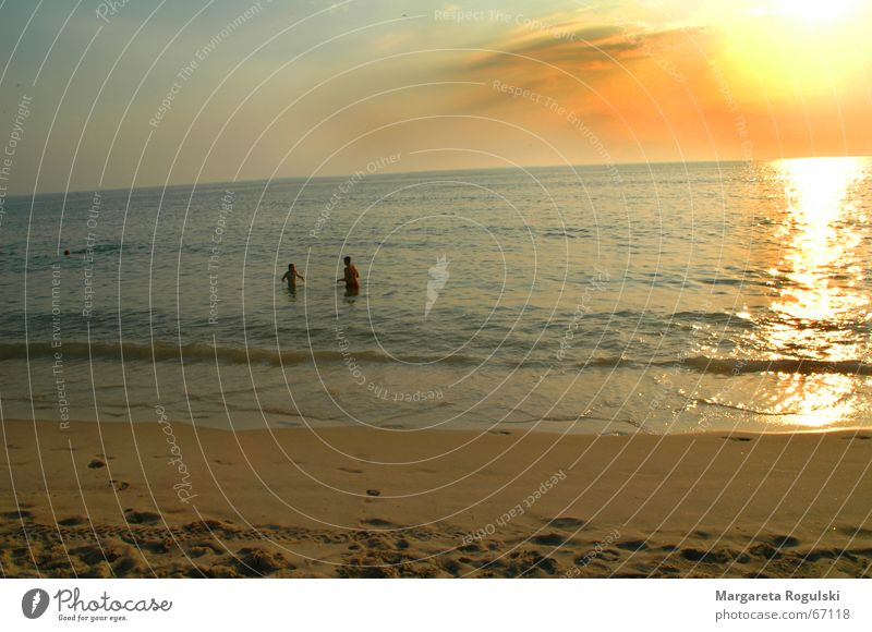 beach Beach Ocean sunset Couple Sand Human being Water In pairs
