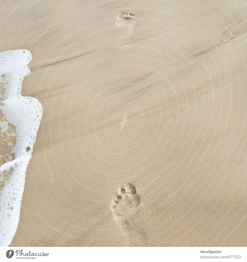 Your tracks in the sand... Vacation & Travel Tourism Summer Summer vacation Sun Beach Ocean Waves Mediterranean sea Swimming & Bathing Going Walking Esthetic