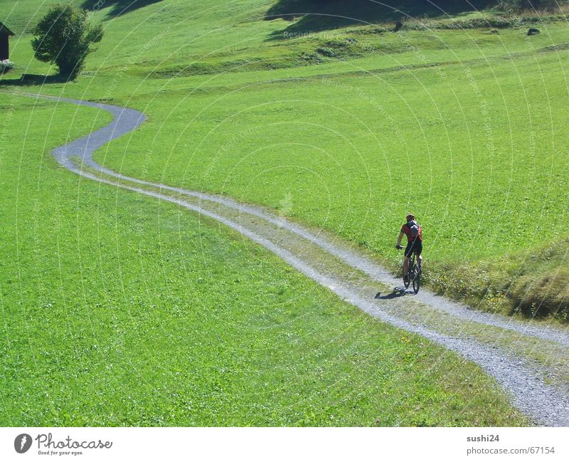 finally free Meadow Calm Loneliness Footpath Slowly Peace Relaxation Vacation & Travel Wide angle biking mountain mountainbike switzerland Alps Lanes & trails