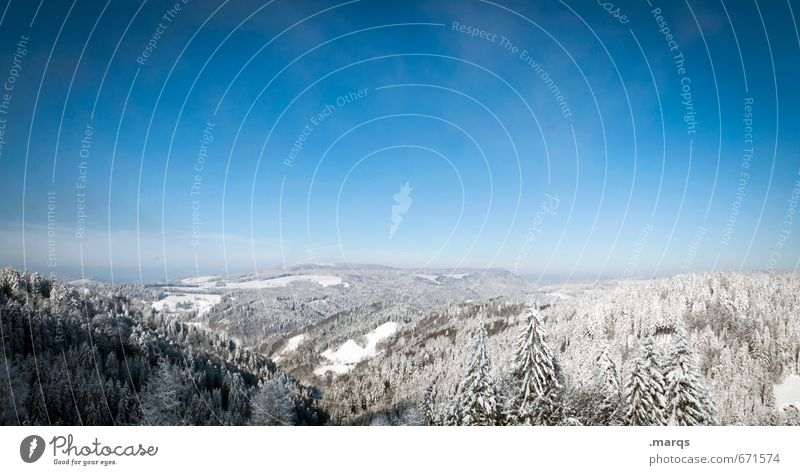 Nature Vacation & Travel Blue Beautiful White Landscape Winter Far-off places Cold Forest Snow Freedom Bright Moody Horizon Tourism