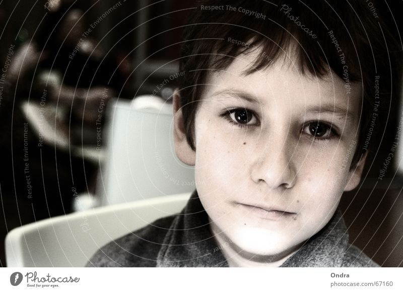 Face Boy (child) Sadness Think Masculine Grief Ask Earnest