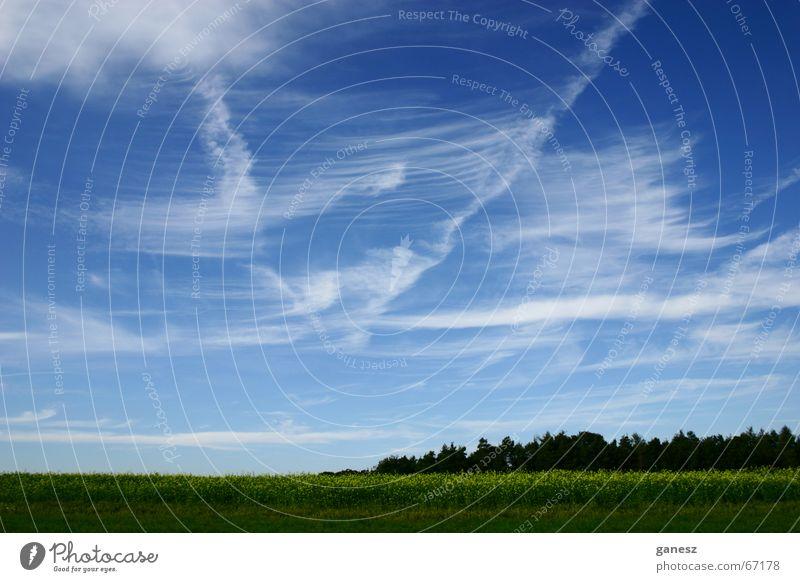 Sky Summer Clouds Forest Landscape Field
