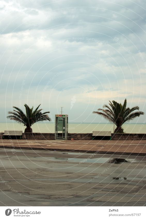 Ocean Beach Rain Landscape Swimming pool Level Italy Palm tree Puddle Marche Province