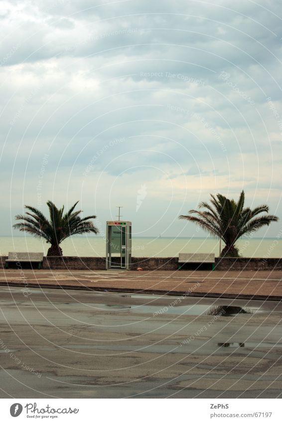 phone alone Beach Italy Level Marche Swimming pool Palm tree Rain Ocean Puddle adriatic civitanova landscape province rainy reflection sea