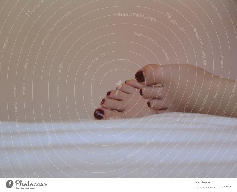 Relaxation Feet Flat (apartment) Soft Sleep Bed Blanket Safety (feeling of) Cosmetics Nail polish Pedicure