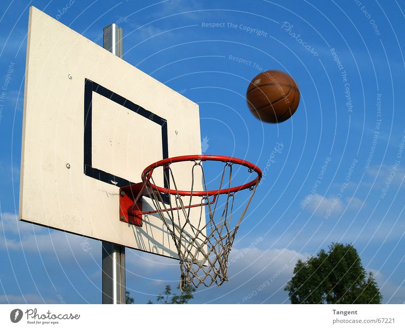 Der ist drin! oder? Sports Ball sports Sporting event Sky Net Movement Flying Throw Success Target Basket Strike Basketball Exterior shot Deserted