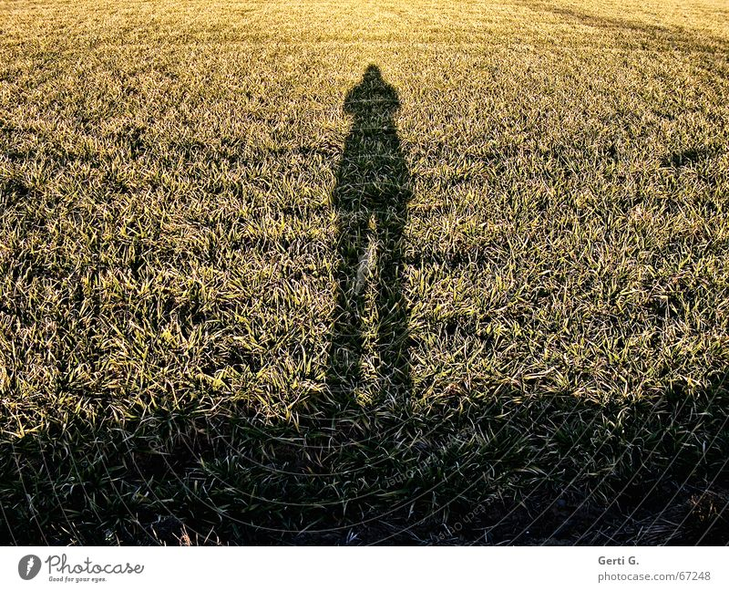 I am the greatest Field Winter Dark oh man I wouldn't have thought that you take that been there 100 times self disproportionally Shadow Hoar frost Bright Grain