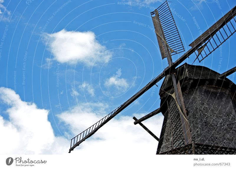 In memory of Don Quixote Mill Windmill Historic Wood Mince Old times Craft (trade) Exterior shot Rotate Potsdam past time Sky don quichotte Fight