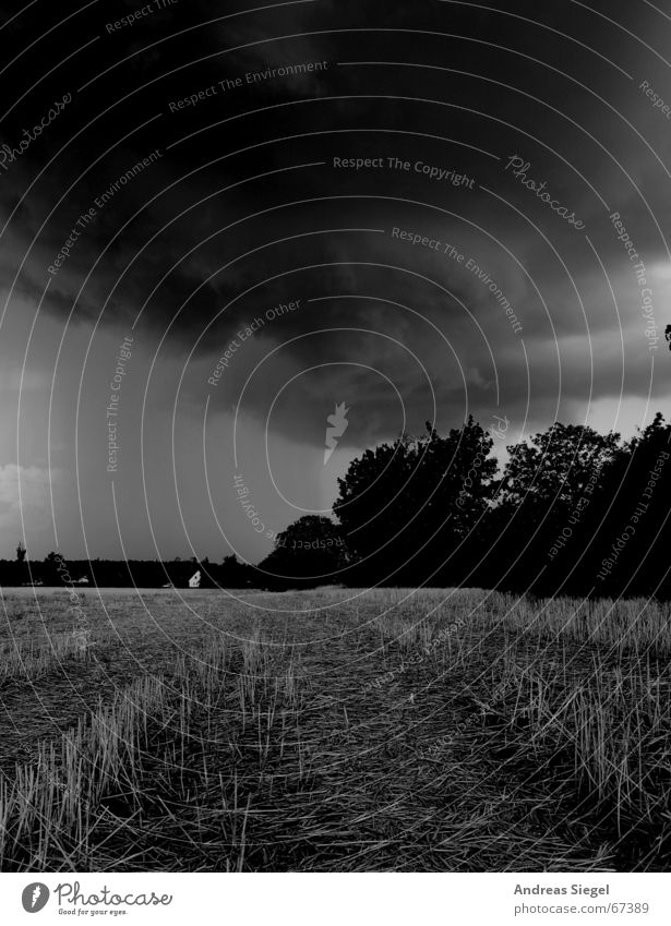 Something's brewing... Thunder Clouds Dark Black Storm Field Gale Black & white photo Thunder and lightning rumble Weather Threat Rain Wind Stopper Harvest