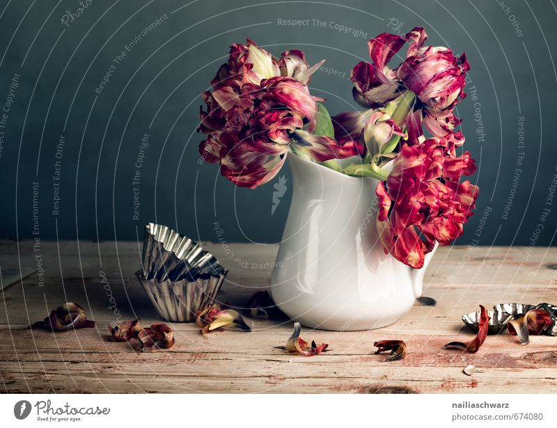 Beautiful Red Flower Style Gray Wood Metal Idyll Glass Esthetic Table Transience Retro Romance Dry Bouquet