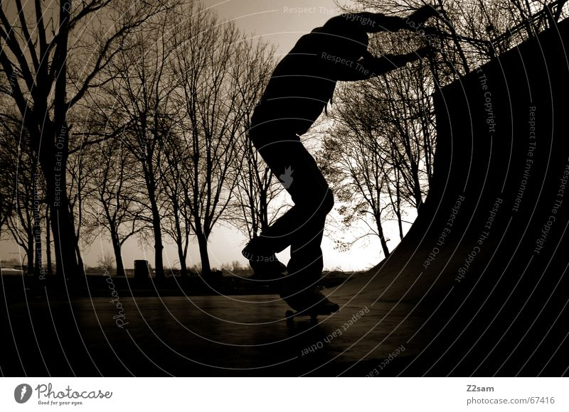moonlight_nosewheelie Skateboarding Halfpipe Night Twilight Back-light Ramp Sports Contentment Evening Shadow Wooden board Funsport