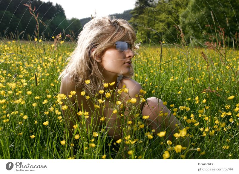 Woman Flower Meadow Blonde Sunglasses Eyeglasses