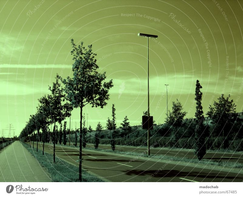 Sky Nature Green Colour Tree Clouds Street Death Moody Line Empty Threat Lantern Futurism Asphalt Creepy