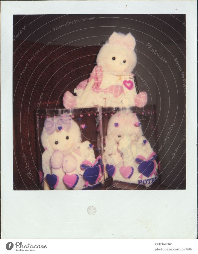 Heart Toys Infancy Doll Polaroid