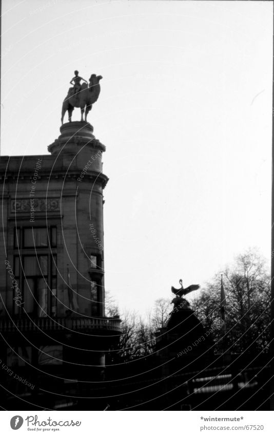 **zoo** Zoo Camel Belgium Antwerp Gray scale value Edge Rider entrance next to the station centraal station Black & white photo analog and dirty