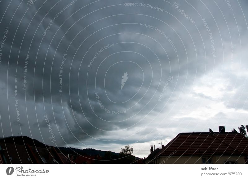 Sky Plant Landscape Clouds House (Residential Structure) Dark Environment Gray Weather Rain Wind Climate Threat Roof Storm Gale